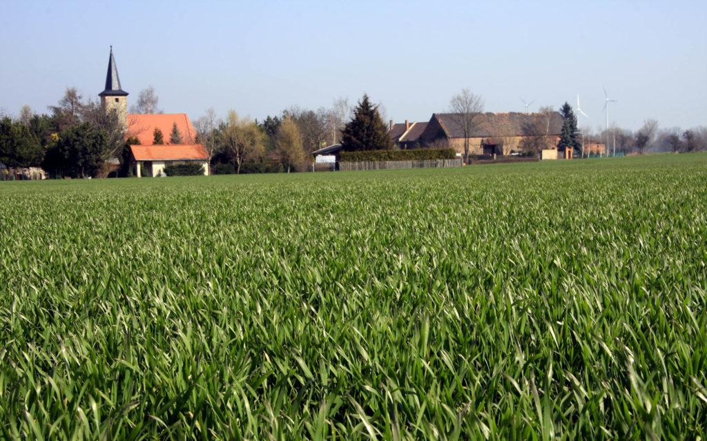 Landschaft in Sachsen Anhalt