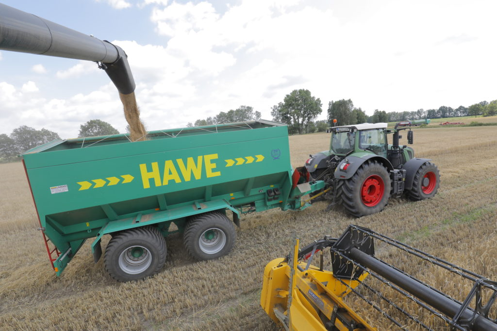 Überladewagen wird mit geernteten Getreide gefüllt