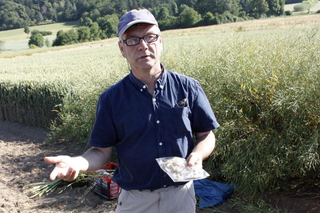 Dr. Birger Koopmann von der Uni Göttingen ist auf Rapskrankheiten spezialisiert