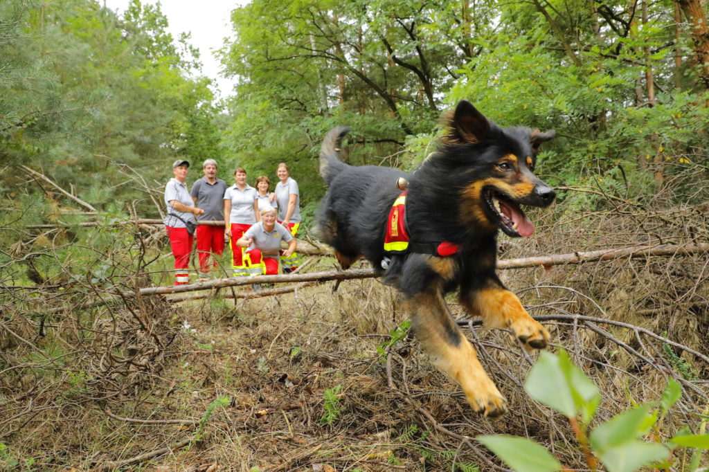 Rettungshundestaffel Elbe Elster