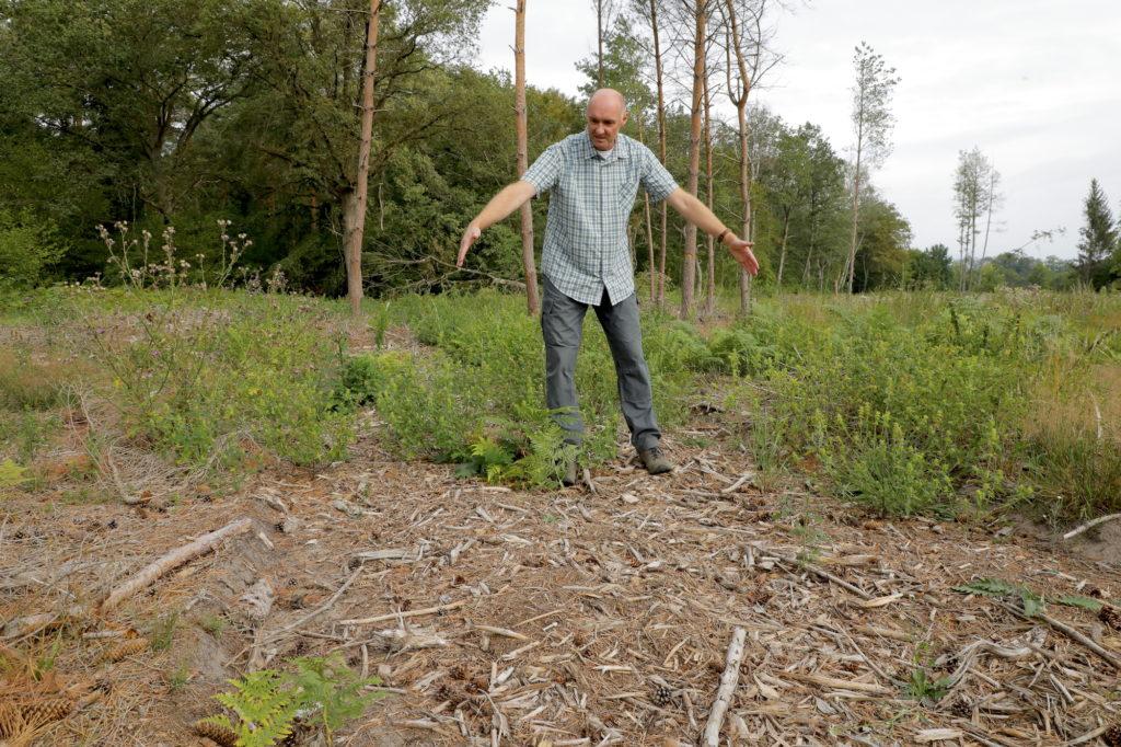 Thomas Meyer in einem Waldstück bei Nauen