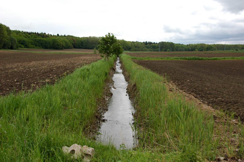Gewässer in der TZG Ernstroda