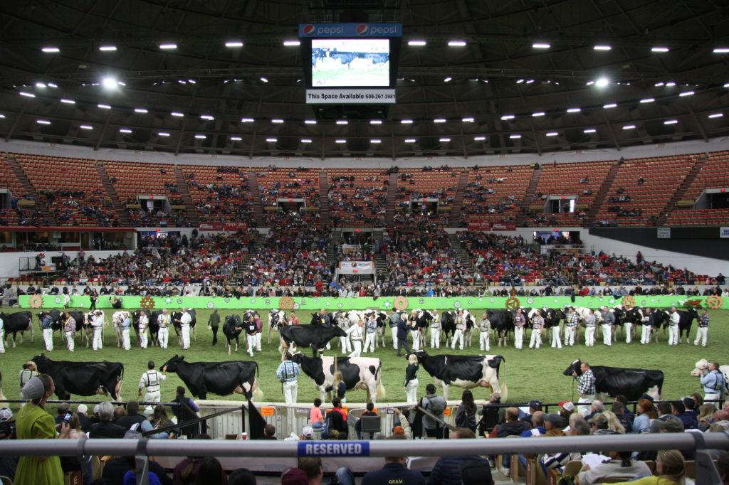 Große Parade auf der World Dairy Expo