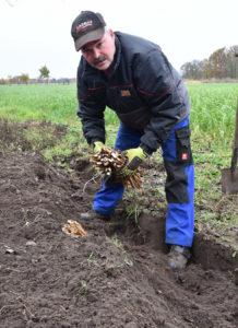 Landwirt Dirk Richter macht in Meerrettich.