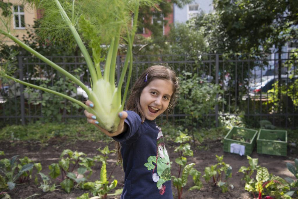 Eine Schülerin der Gemüse-Ackerdemie hat Fenchel geerntet