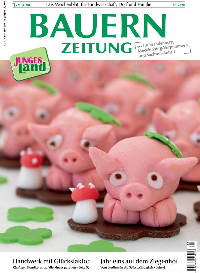 Bauernzeitung Ausgabe 1: Landesfachklasse Mecklenburg-Vorpommern für Konditoren