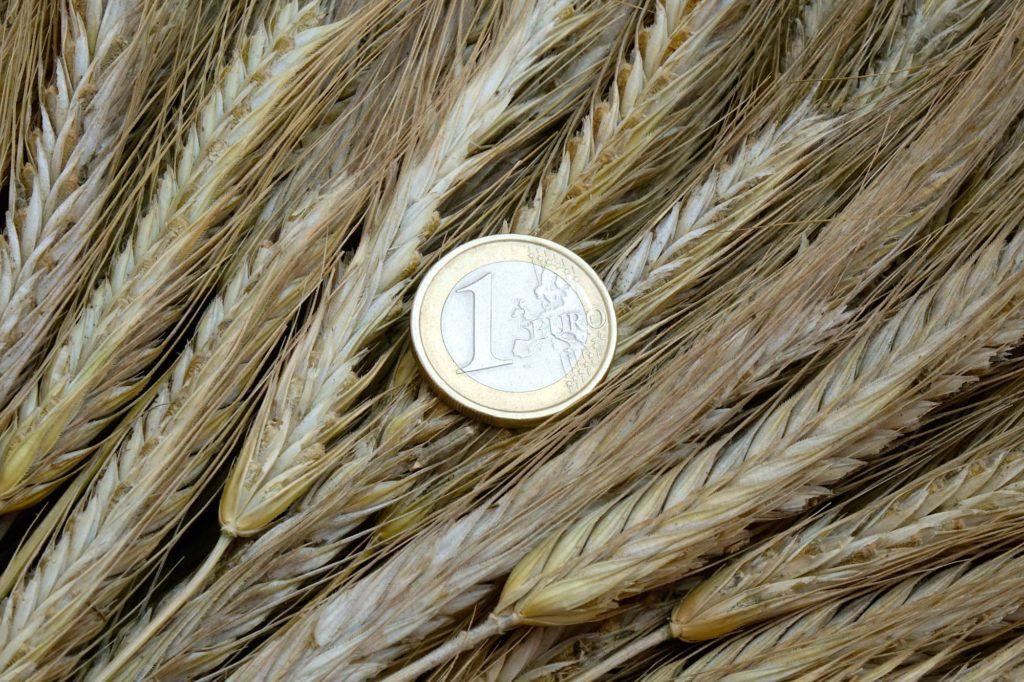 Arno Reis über EU-Direktzahlungen