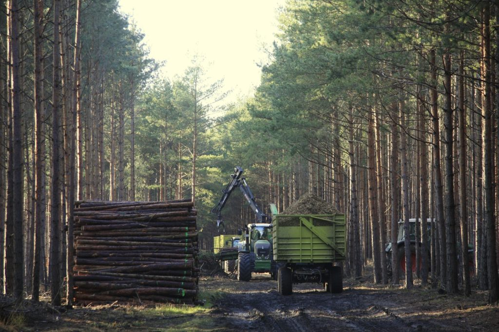 Forstbetrieb bei der Holzernte. (c) Sabine Rübensaat