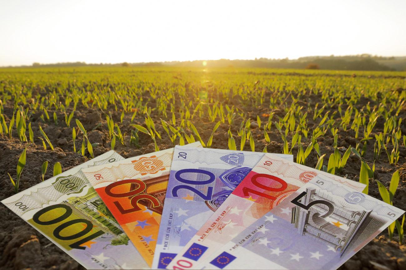 Steuern Landwirtschaft