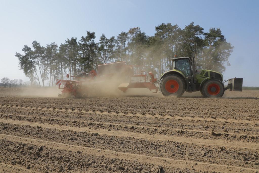 Ein Traktor bei der Maisaussaat im Havelland in Brandenburg.