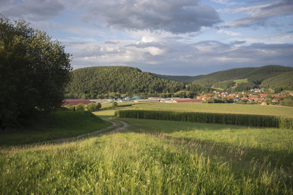 Blick auf die Agrargenossenschaft Teichel eG