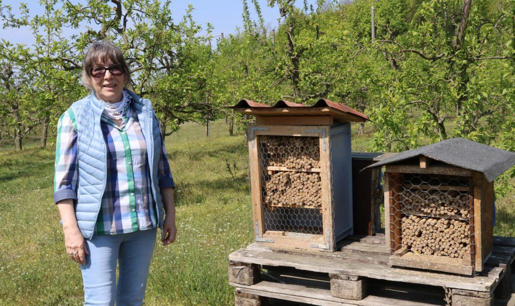 Obstbäuerin Claudia Schernus aus Frankfurt (Oder) vor den Behausungen ihrer Wildbienen