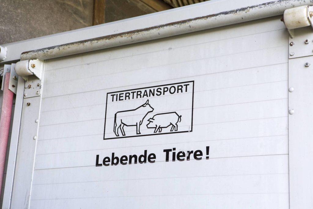 Wegen fehlender Versorgungsstellen werden keine Tiere Brandenburg Richtung Russland verlassen