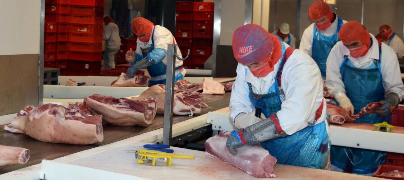 Fleischer zerlegen Schweinehälften.
