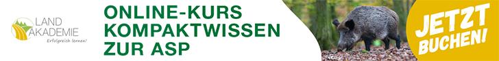 Kompaktwisssen Online Kurs ASP Wildschwein