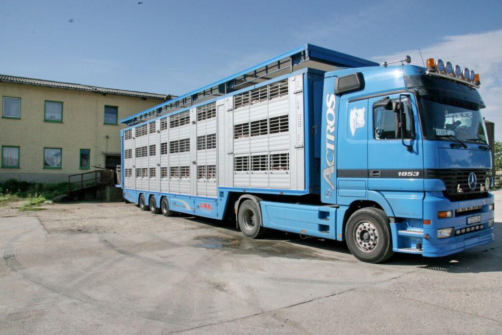Händler, Schlachthöfe und Erzeuger stimmen sich fortlaufend ab, um nach Möglichkeit solche Betriebe zu entlasten, bei denen akut besonders großer Druck in den Ställen entsteht.