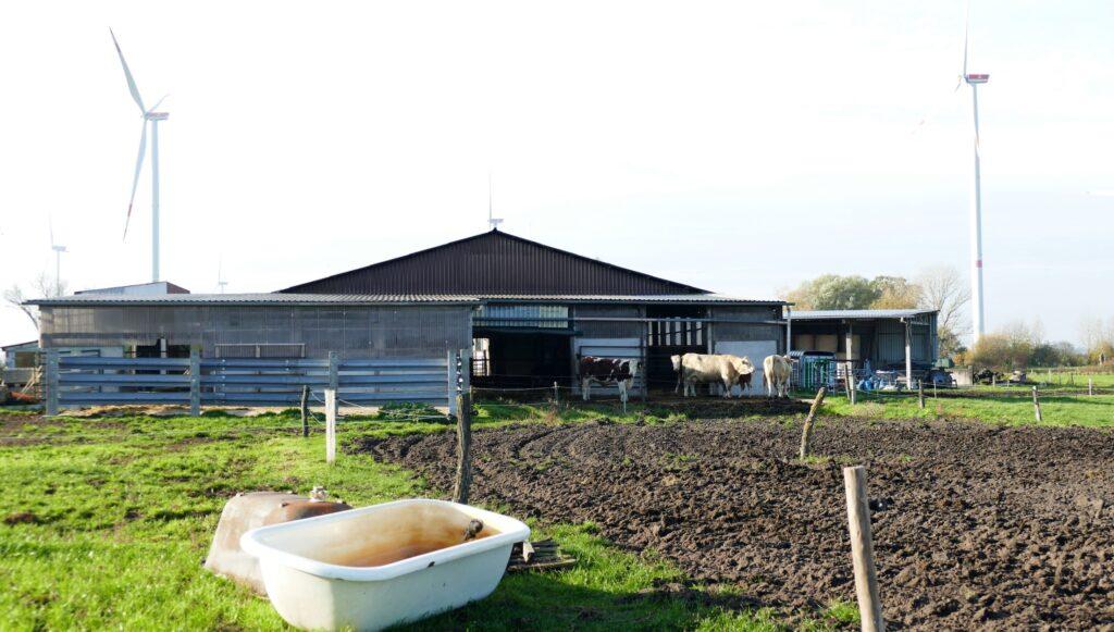 Der Stall und die Weiden liegen am Ortsrand von Dobberkau.